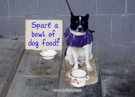 begging-dog_www-txt2pic-com.jpg
