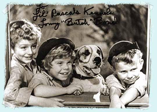 Little Rascals Dog Name