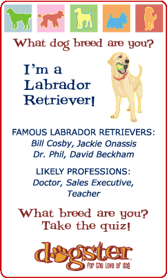badge_lab.png