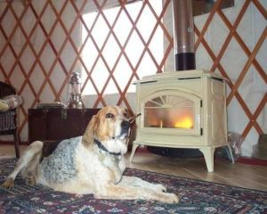 Affordable Dog Friendly Places To Stay South West England