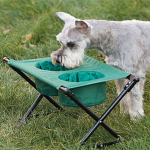 dog camping stuff