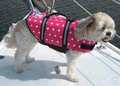 paws-aboard-pink-dot-life-jacket