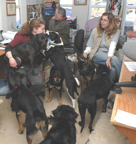 si_dogtrainersoffice