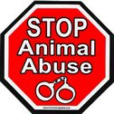 Https Www Globalanimal Org    Is Your Dog Food Killing Your Dog