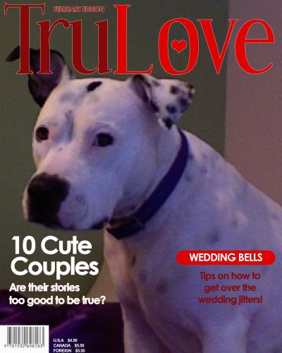 Homemade Valentine Dog Treat Recipes