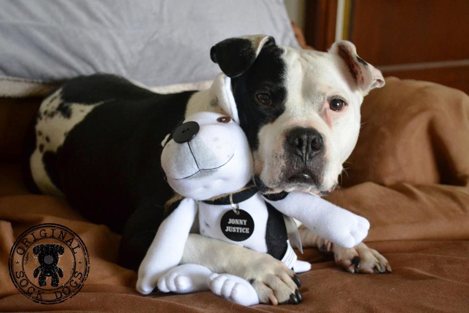 Stuffed Dog That Walks And Barks