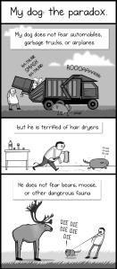 Long Lasting Dog Treats Recipe