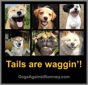 Tennessee Inspired Dog Names