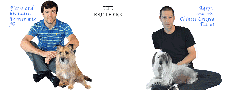 Brothers Complete is a grain free, white potato free dog food, with ...