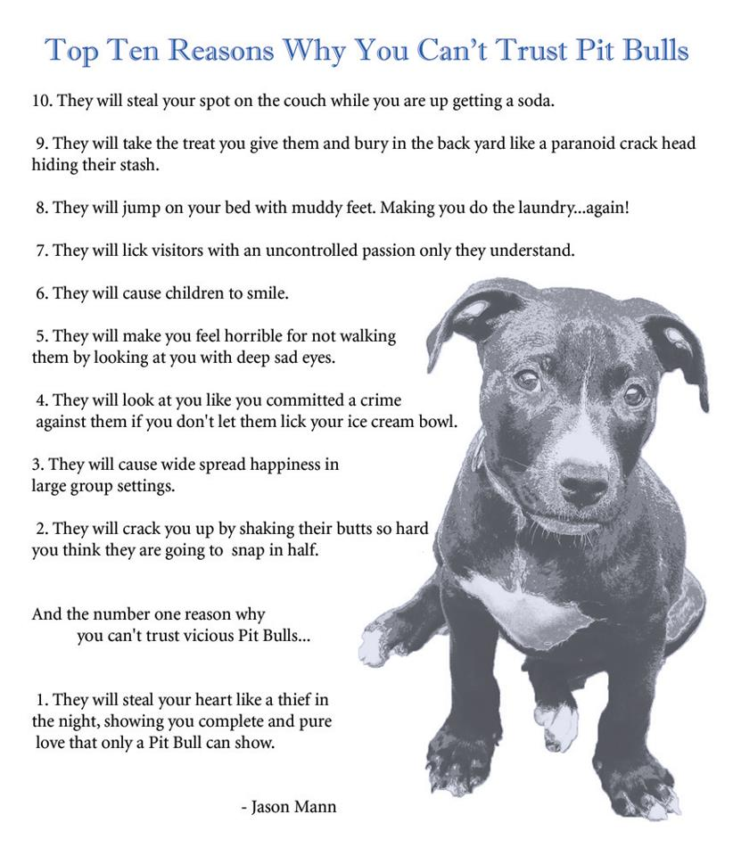 Can Pitbulls Be Good Family Dogs