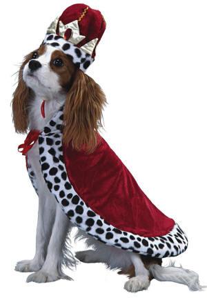 royal-dog-logo1