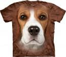 beagle-face
