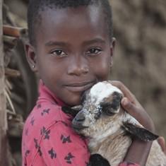 nc_goats2_big_thumb