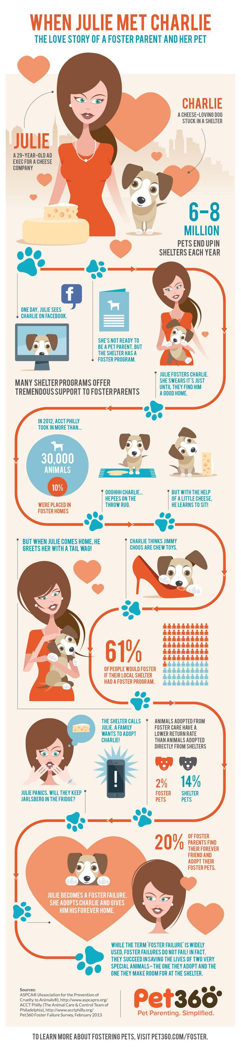 Adopt Vs Foster Dog