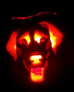 dog+pumpkin+2