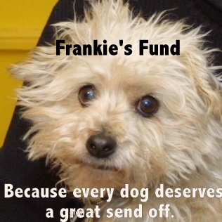 Frankie-for-blog-004