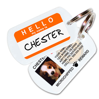 hello-orange-pet-id-tag-med