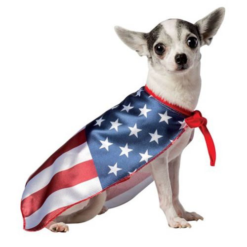 usa-flag-cape-dog-costumerasta-imposta-9135
