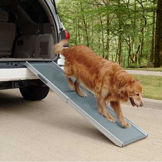 0000611_deluxe-telescoping-pet-ramp_328